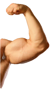 Buy Real Testosterone - No Prescription - Testosterone Rx